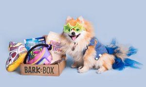 Monthly dog box, Barkbox
