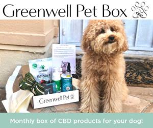Monthly dog box, Greenwell