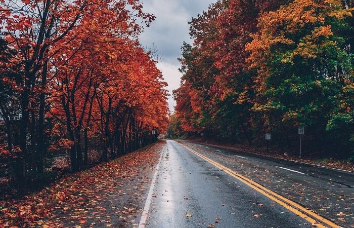 outdoor activities in fall